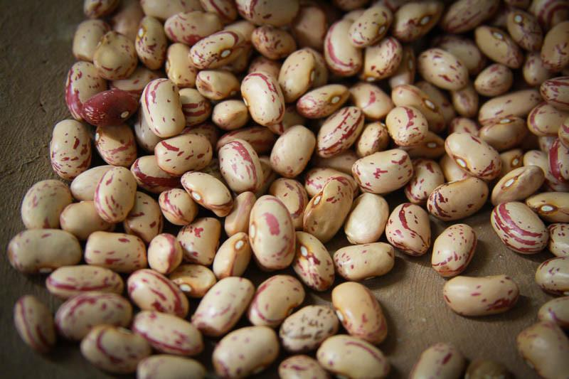 Baby Girl Dies After Swallowing Raw Bean Seed