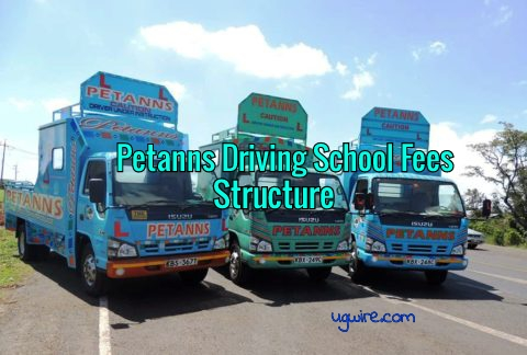 Petanns Driving School Fees Structure 2020 Charges and Prices