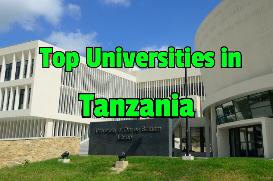 Top Ten Best Universities in Tanzania 2020