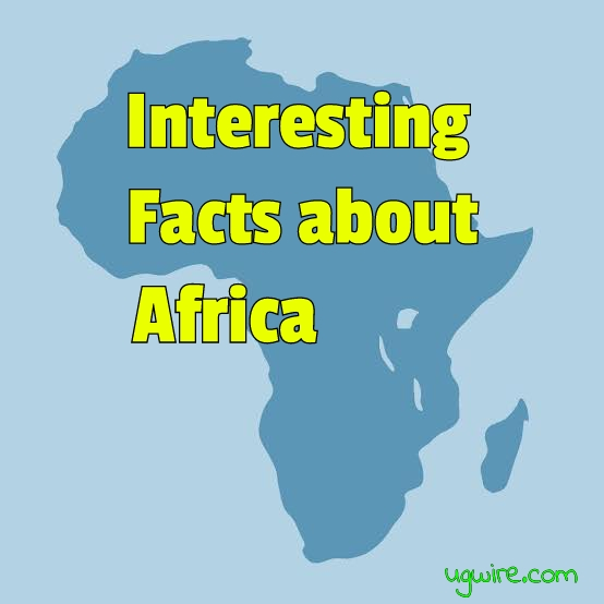 14 Odd Facts About Africa Everyone Wished They Read Up