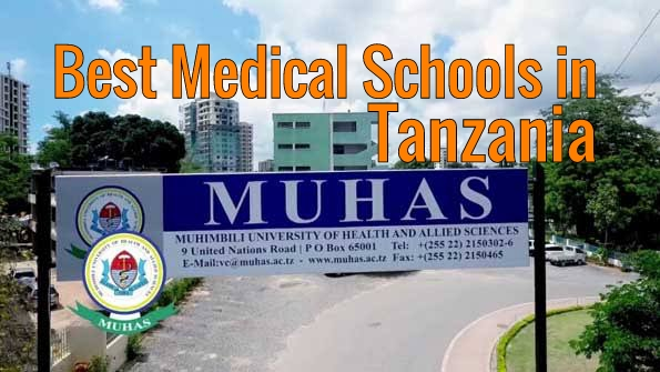 Best Medical Schools in Tanzania 2021 Top Colleges List