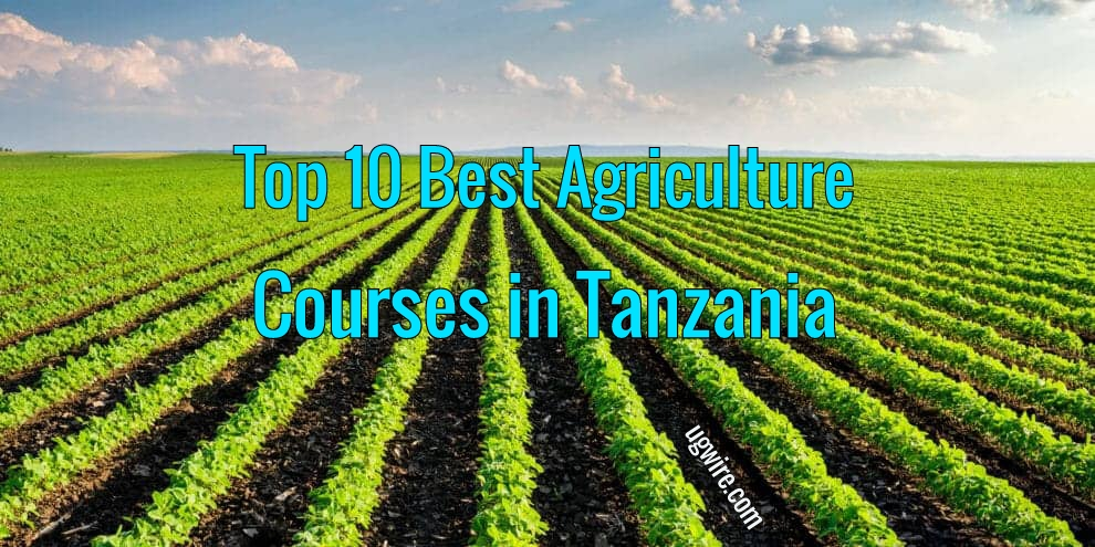 Agriculture Courses in Tanzania 2020 Top 10 Best
