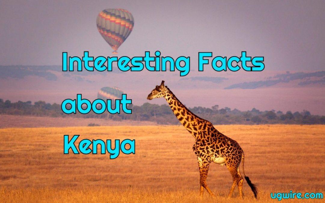 Interesting Facts about Kenya Safari & Economy