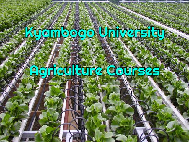 Agriculture Courses at Kyambogo University